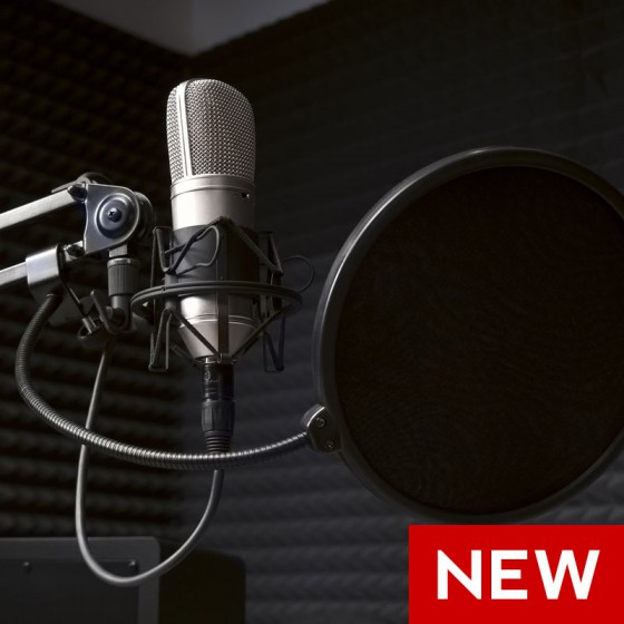 Voice Over for Photo Gallery